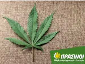cannabis 800x600