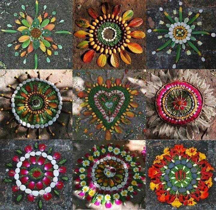 seeds-flowers