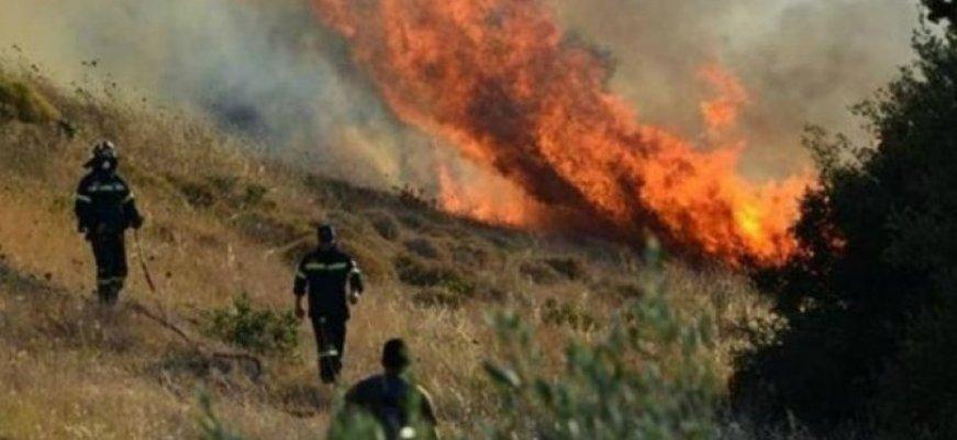 πυρκαγια-ευβοια