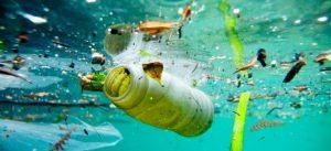 marine-litter2